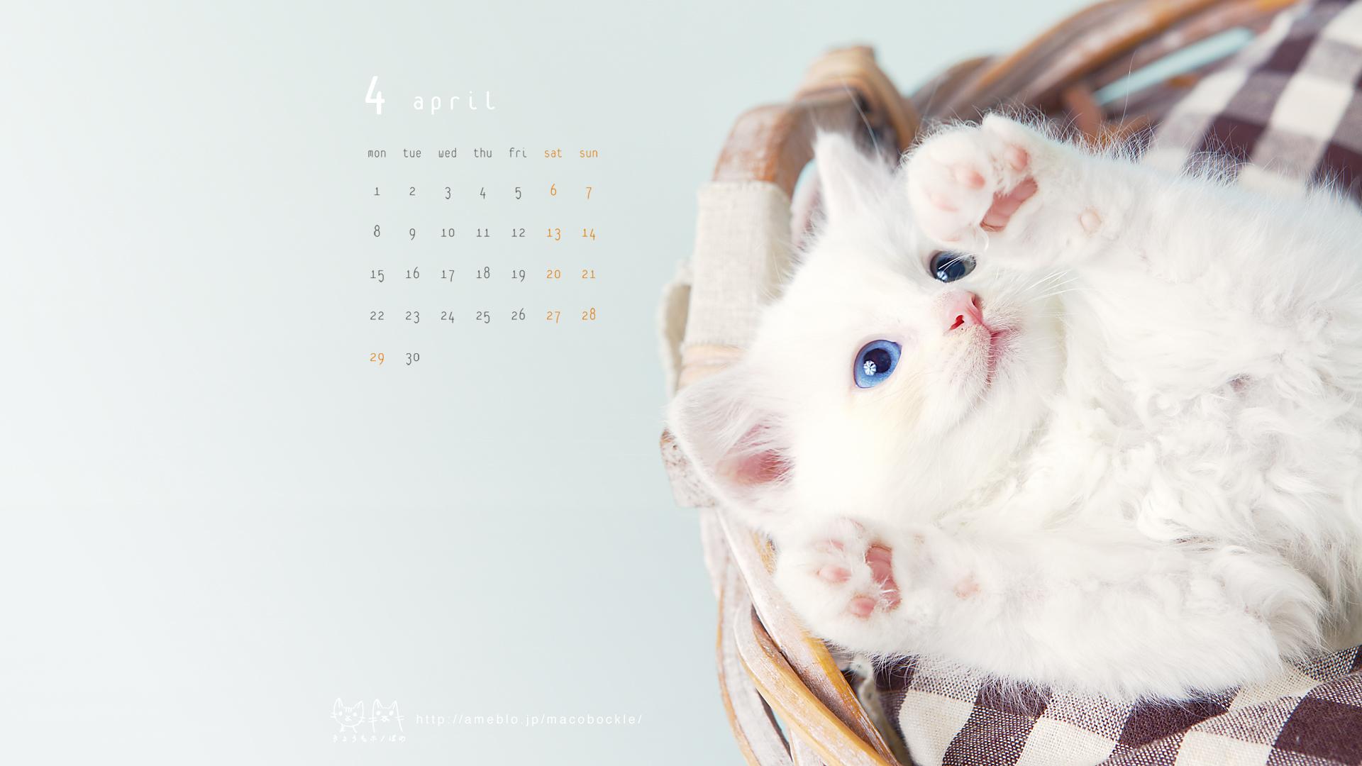 デスクトップ壁紙・カレンダー ...