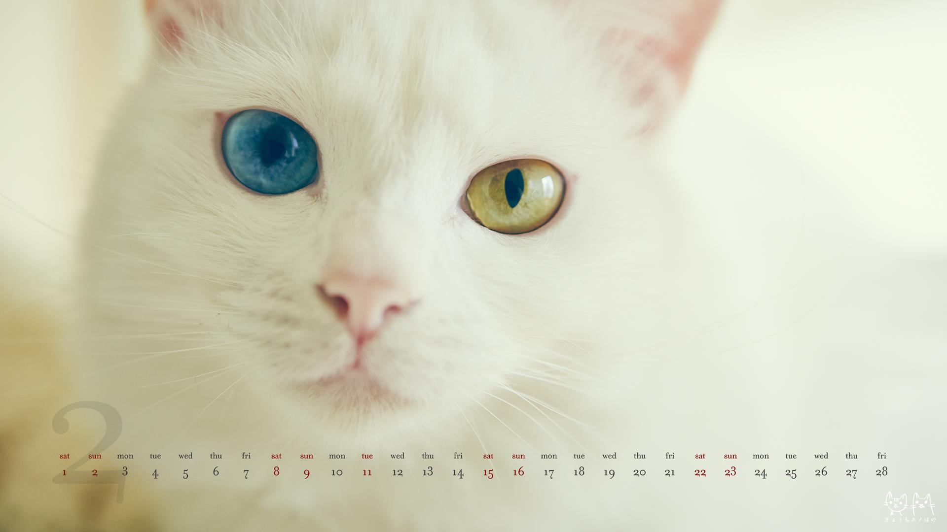 カレンダー カレンダー 2014 かわいい : 2014年2月のデスクトップ壁紙 ...
