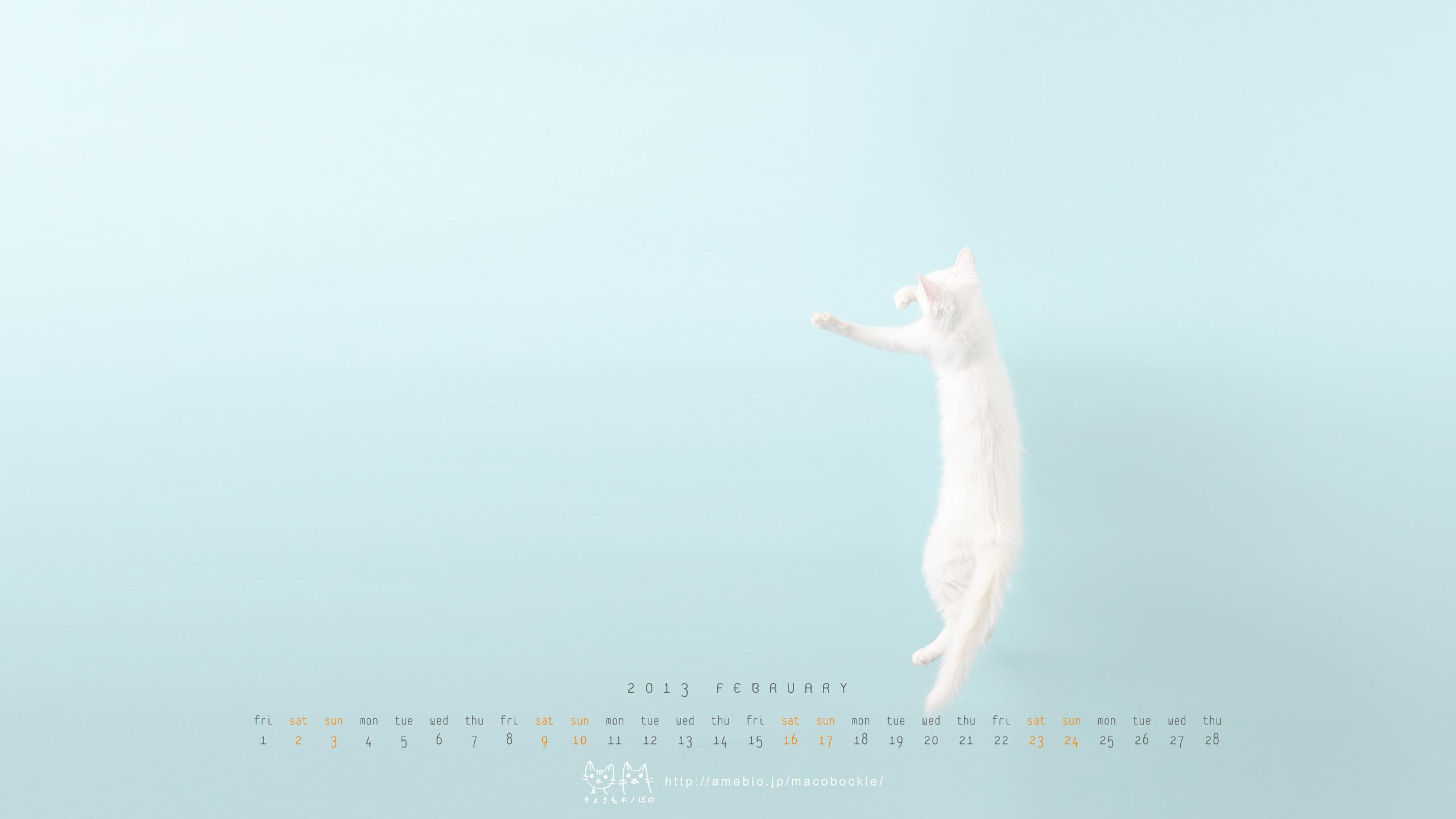 2013年2月のデスクトップ壁紙 カレンダー ぼのジャンプ Hono And